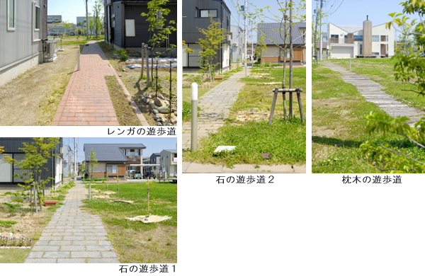 幅1.5mの遊歩道