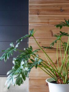 木製サイディングをアクセントにした玄関ポーチ