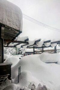2021年1月新潟市内の大雪状況